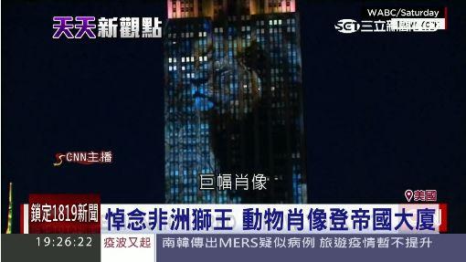 帝国大厦投影濒临绝种动物惊艳夜空