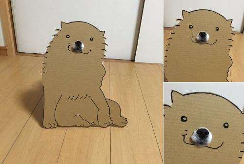 动物纸箱立体图片大全