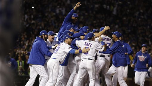 小熊,MLB(圖/美聯社/達志影像)