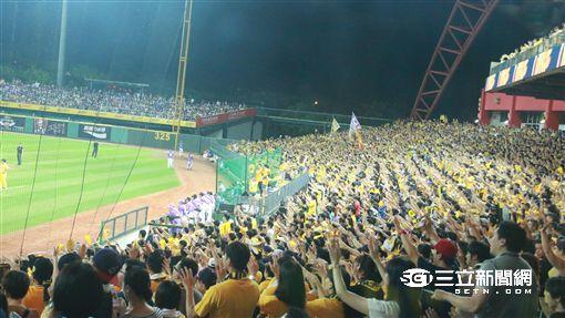 台灣大賽,兄弟球迷(圖/記者王怡翔攝)