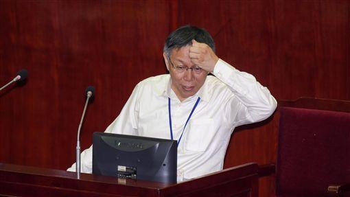 台北市議會總質詢,台北市長柯文哲 圖/記者林敬旻攝