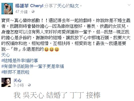 圖翻攝自楊謹華臉書  天心