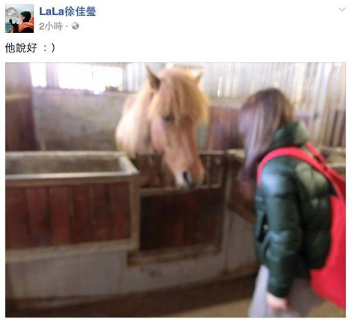 林宥嘉,求婚,丁文琪,徐佳瑩/臉書、資料照
