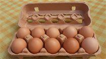 雞蛋,盒裝蛋(圖/維基百科)