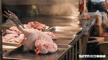禽流感,雞鴨,H5N6,防疫,疾管署,農委會 圖/記者林敬旻攝