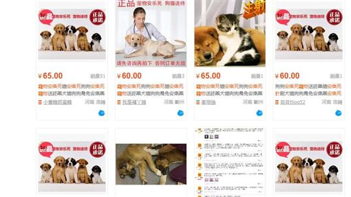 淘寶店家賣「寵物安樂死針」月銷數量破百 嚴重可致人死亡/翻攝自淘寶網