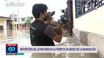 祕魯,洪水,水災,記者,連線,救狗,狗狗,救援,溫馨 圖/翻攝自YouTube