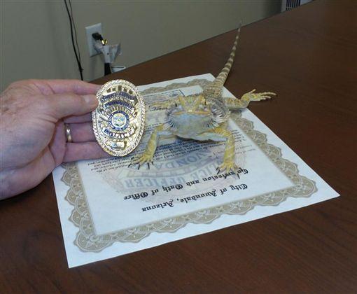 美國「警察蜥蜴」。(圖/翻攝自臉書)