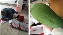 泰國,親情,溫馨,芒果,潑水節,郵局,慈父,父親 圖/翻攝自臉書
