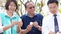 戴奧辛事件衝擊 農委會:嚴密掌握雞蛋價格走勢