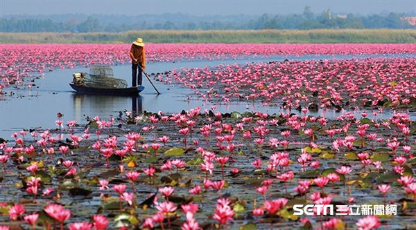 泰國旅遊,伊森。(圖/泰觀局提供)