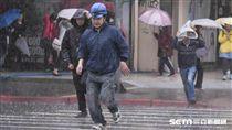 颱風,強風,下雨,大雨(圖/記者林敬旻攝)
