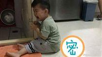 男童,蝦子,惡作劇,嚇哭(圖/翻攝自爆料公社)