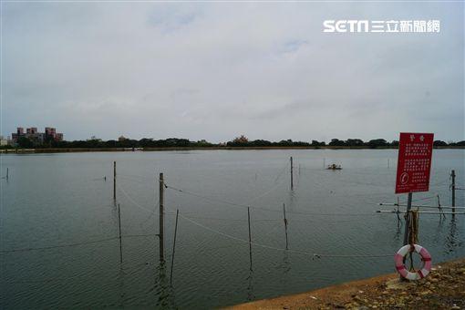 吳郭魚爆染湖泊病毒(圖/桃園市動保處)
