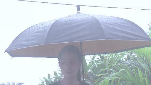 旋轉傘彈開雨滴!號稱難「開花」、不溼身