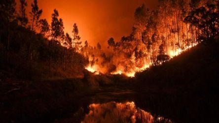 葡萄牙大火(圖/翻攝自推特)