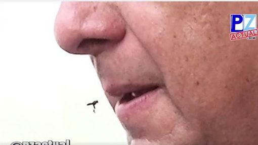 哥斯大黎加總統生吃黃蜂_PZ Actual臉書