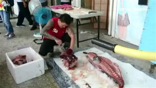 屏東,東港高中,畢業典禮,生魚片,鮪魚,請客,殺魚秀