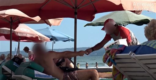 印尼巴里島,峇里島,狗肉,肉串 圖/翻攝自3AWRadio,YouTube