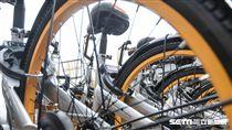 oBike亂象,無樁自行車,共享,機車,腳踏車,停車格,違停 圖/記者林敬旻攝