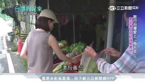 南非美女主廚 深根台灣推廣健康蔬食 ID-973455