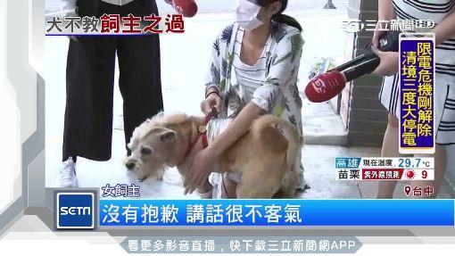 愛犬遭狠咬攻擊 比特犬飼主:就是養來咬狗