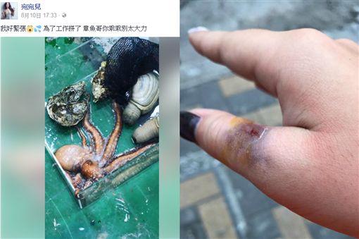 圖/翻攝自宛宛兒臉書