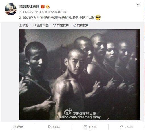 林志穎被告侵權照片/微博