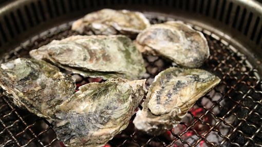 鮮蚵,牡蠣,蚵仔 圖/翻攝自Pixabay