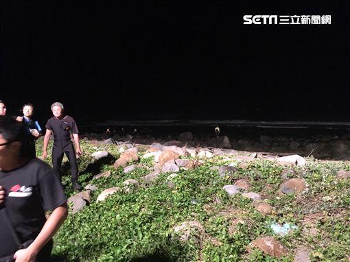 搜救人員沿著海岸線進行搜索。(圖/翻攝畫面)