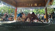 和泰大金捐贈  修復大溪相撲道場