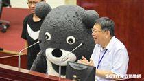 16:9 世大運吉祥物熊讚在台北市議會備詢,台北市長柯文哲簽署承諾書留住熊讚 圖/記者林敬旻攝