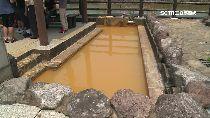 f髒水黃金湯1200