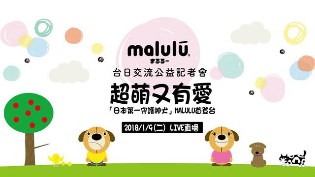日本守護神犬MALULU台日公益交流會