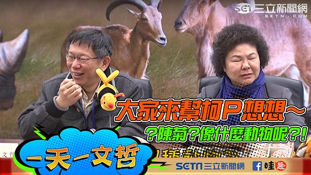大家來幫柯P想想~陳菊像什麼動物呢?