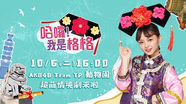 超萌的AKB48 TeamTP動物園開張