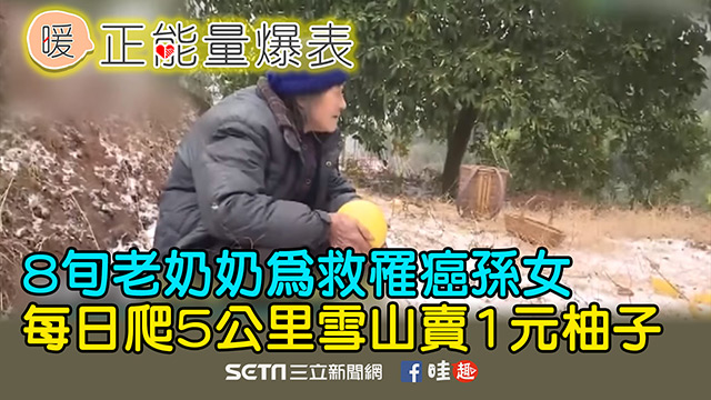 為救罹癌孫女 老奶奶每日賣1元柚子