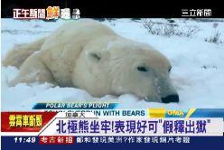 北極熊監獄1100.