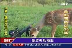 小鹿舔步槍0800