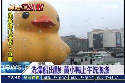 黃小鴨洗澡1200