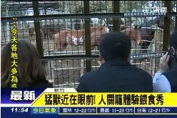 牢籠看動物1100