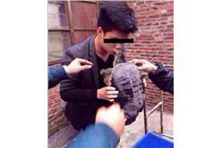 鱷龜激吻男子