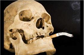 血腥慎入!「豬肺吸菸實驗」看完你還敢抽菸嗎?(圖/翻攝自Youtube)