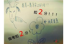 鹿茸、太陽花/張雅筑畫&攝