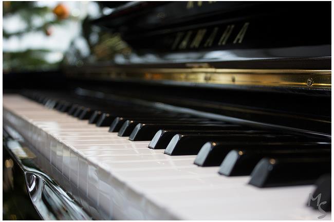 國家音樂廳鋼琴太爛?樂評人:國恥