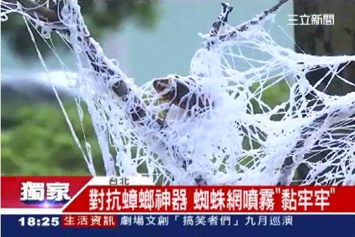 """獨/超夯防蟲噴霧 """"蜘蛛絕招""""對付蟑螂"""