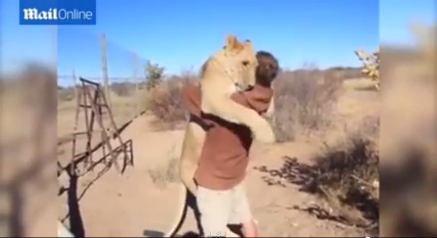 母獅抱抱/youtube