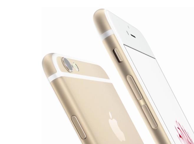 iPhone 6(蘋果官網)