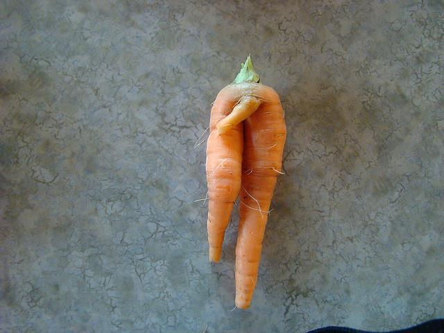 不舉,胡蘿蔔,老二,生殖器,雞雞,GG,陽痿,陰莖(flickr-Gary Koelling)