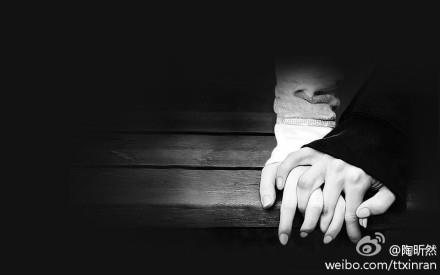 陶昕然_微博
